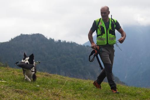 Una quindicina di cani da ricerca in azione in Valle Antrona