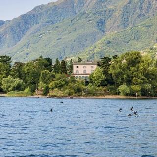 Luoghi del Ticino da non perdere: le Isole di Brissago ed il Giardino Botanico