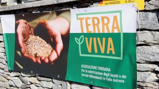 L'associazione Terra Viva punta a produrre succo di mele