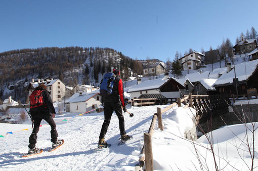 Aree protette, informazione per non mettere a rischio la fauna alpina durante le escursioni invernali