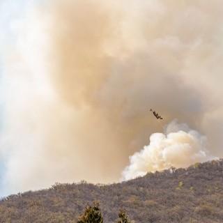 """Uncem: """"Prevenzione incendi si fa con gestione attiva delle foreste secondo strategia nazionale"""""""
