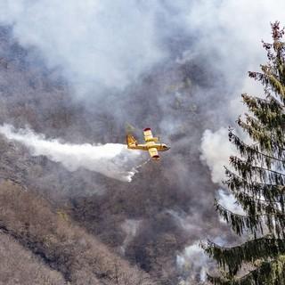 Continuano a bruciare i boschi in Cannobina FOTO E VIDEO