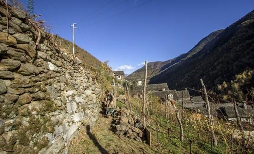 Promuovere il territorio e valorizzare i paesaggi terrazzati: il progetto Interraced-Net
