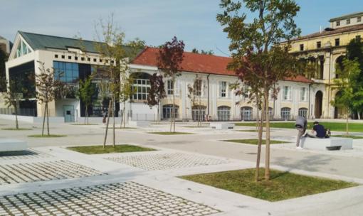 Orientamento, online tutta l'offerta formativa dell'Università del Piemonte Orientale